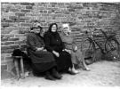 """Katalog wystawy """"100 lat fotografii w setną rocznicę urodzin Profesora Józefa Burszty"""" – Poznań – zapowiedź"""