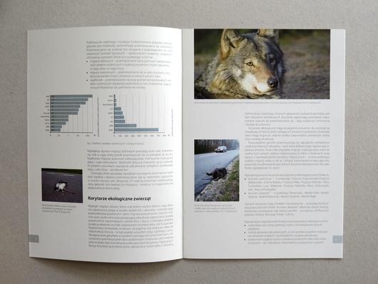 Zwierzęta i drogi katalogbroszura papier ekologiczny bielskobiała