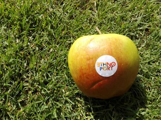 jablko .. etnoport Poznan